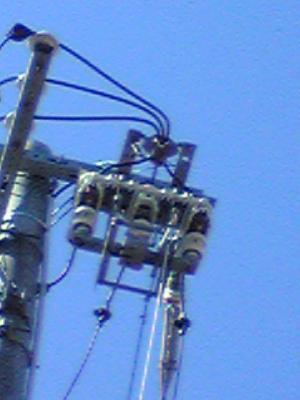 20090207-2.jpg