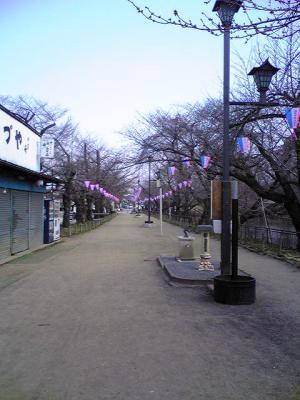 20090401-1.jpg