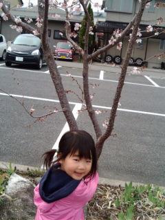 20100328-3.jpg